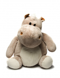 Lunch Webinar: Taming a HiPPO with Data-Driven Culture